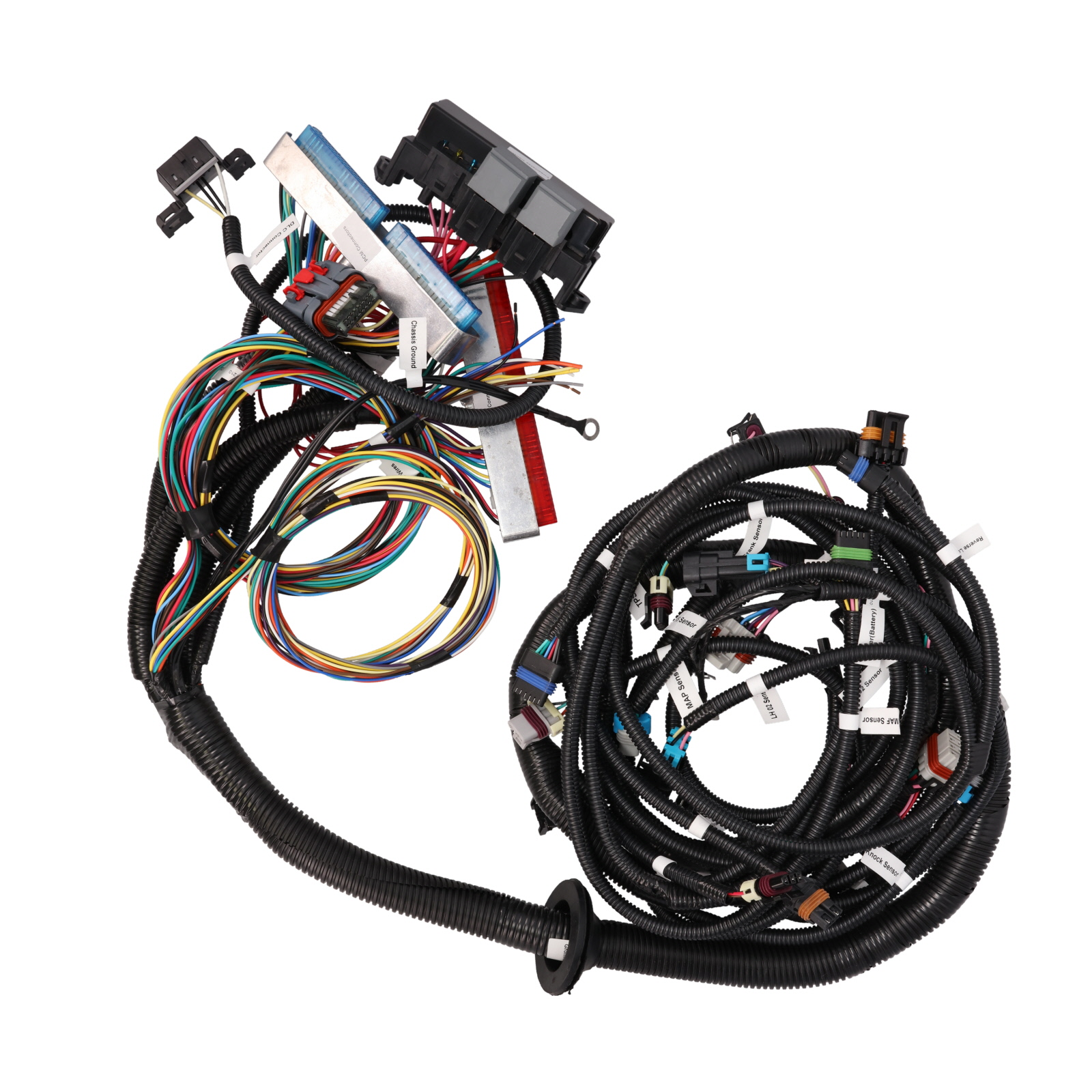 Standalone Wiring Harness for Drive-by-Wire LS1 with T56 Manual  Transmission | Top Street Performance - Free Shipping over $49Top Street Performance